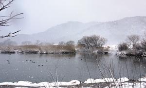20140119_雪.jpg